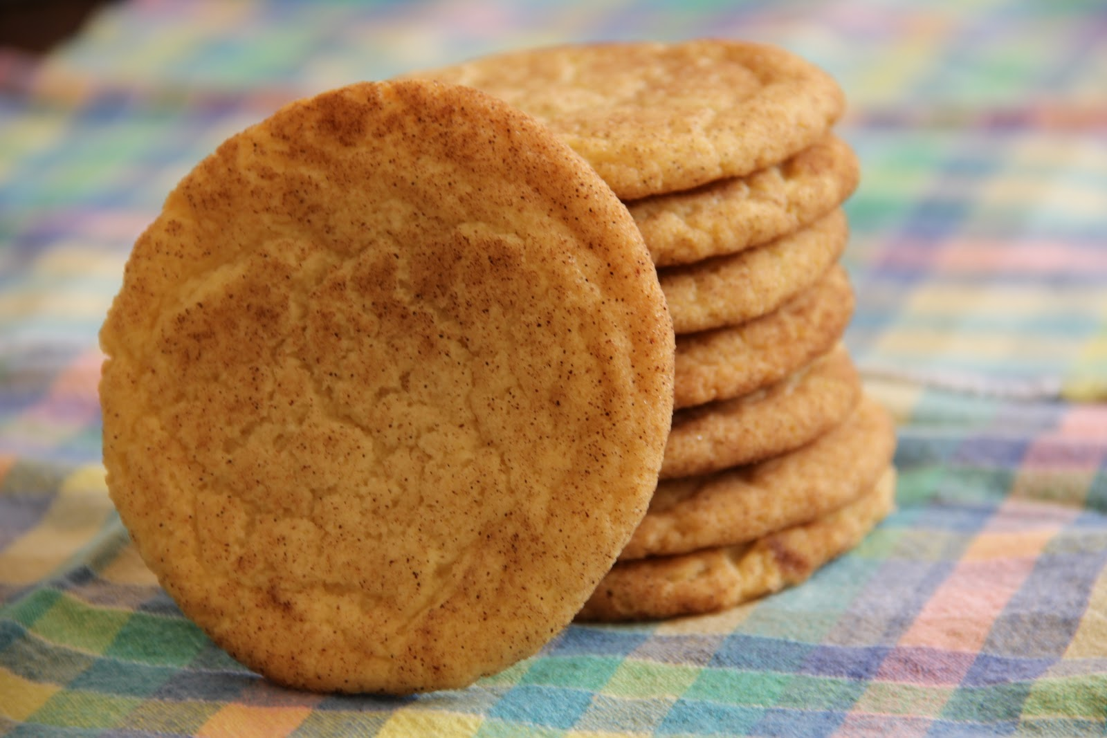 Snickerdoodle Cookie Dough - 2# Tub