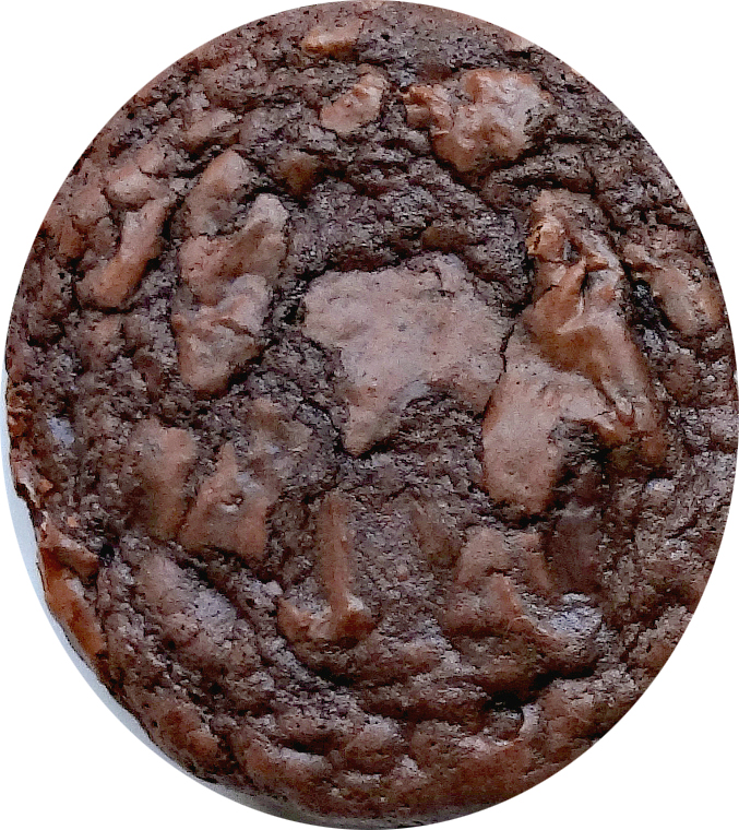 Double Chocolate Cookie Dough - 2# Tub LAST CALL!